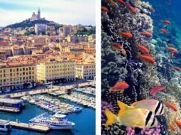 Vieux Port Marseille nettoyer seabin